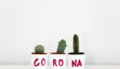 Update corona Afbeelding