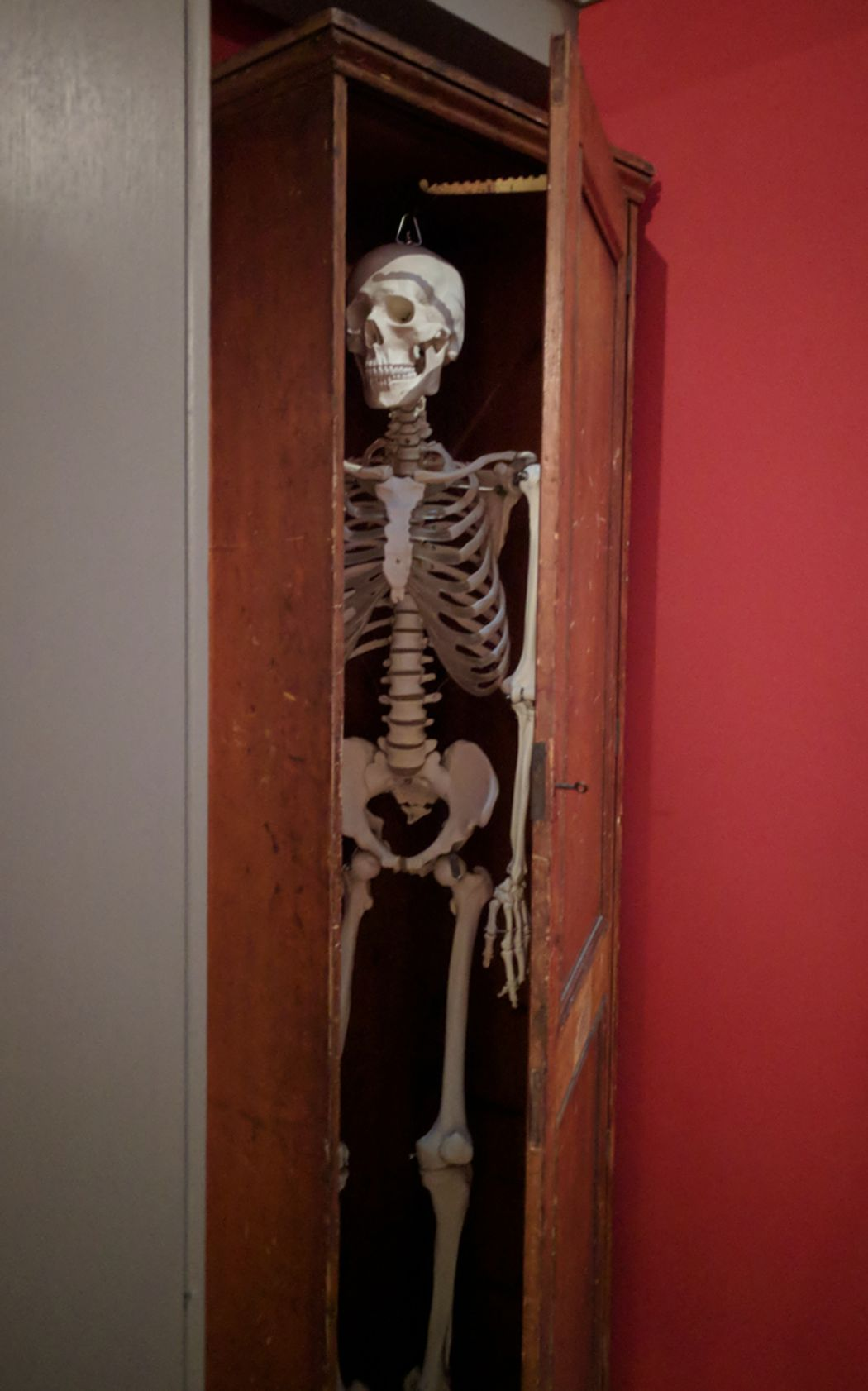 Skeleton in the cupboard at Watts Gallery - Artists' Village