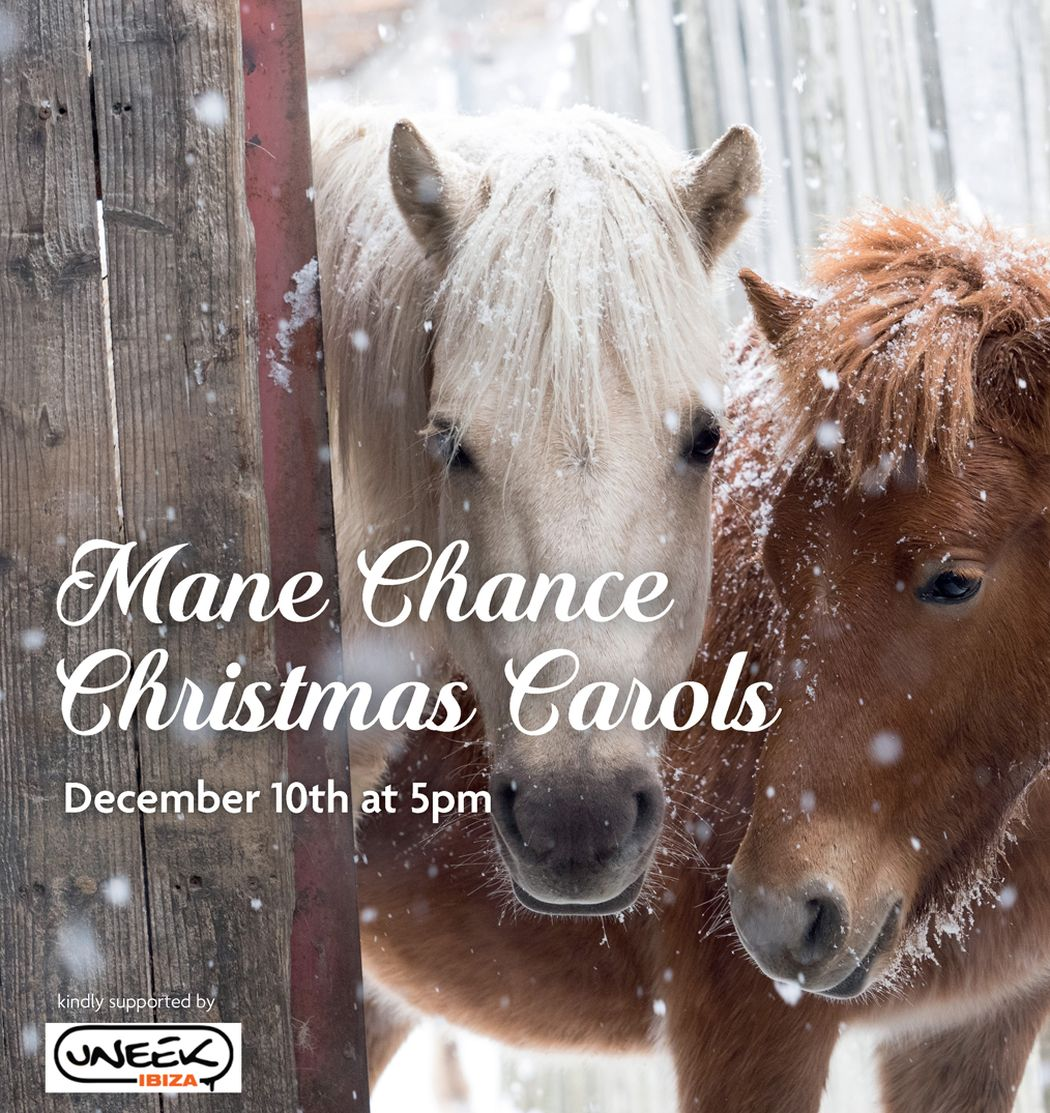 Christmas Carols at Mane Chance