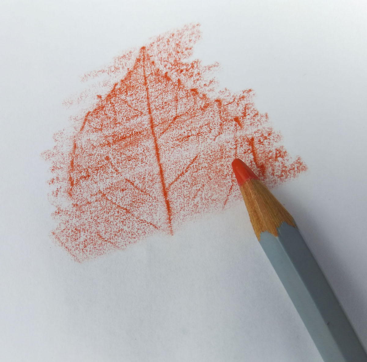 Leaf (or coin) Rubbings