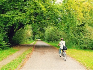 In photos: Cycling in Amsterdamse Bos