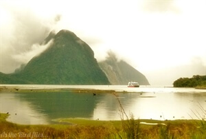 In photos: Milford Sound, New Zealand