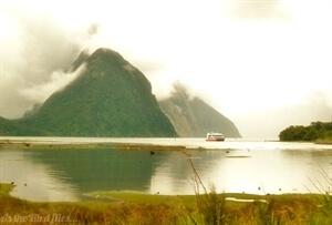 Inphotos: Milford Sound,New Zealand