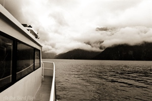 Dreaming in Black and White - Milford Sound
