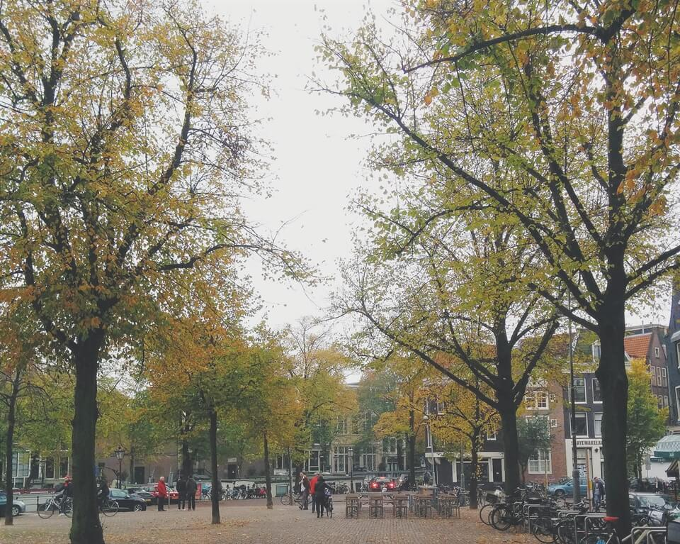 In photos: Amsterdam in Autumn.