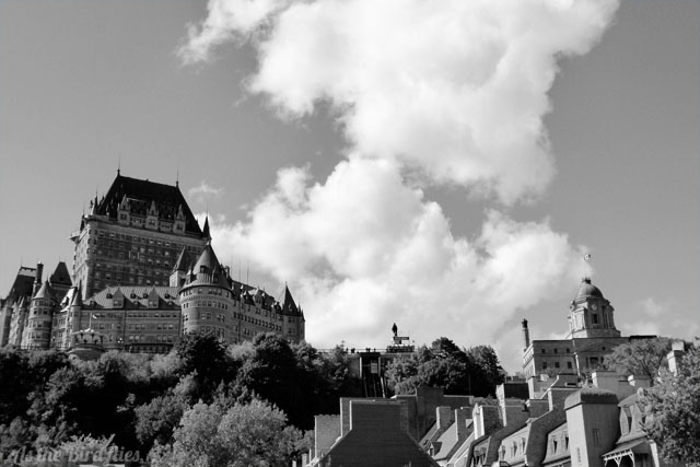 Dreaming in black white quebec city