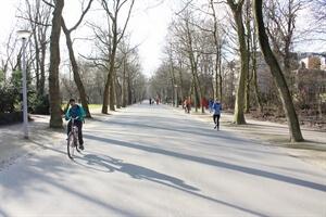 In photos: A Winter Bike Ride in Vondelpark