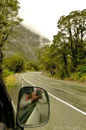 in photos: 50 Shadesof greenin New Zealand