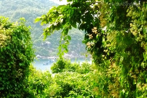 Travel Stories:Mountain Biking on Koh Racha