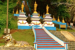 Travel Stories: 1237 Steps of Tiger Temple