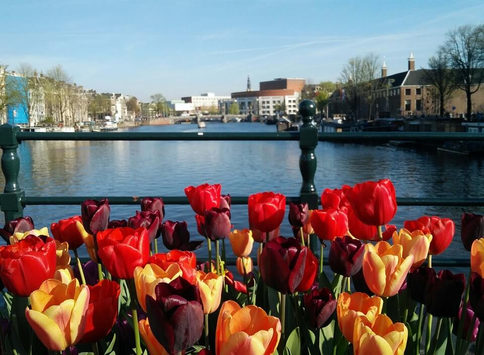 Amsterdam Travel: Things to do in Amsterdam in Spring