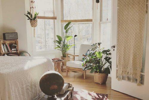 Ein gemütliches Zimmer mit Teppich, mehreren Pflanzen und verschiedenen hoch und tief hängende Lichtquellen