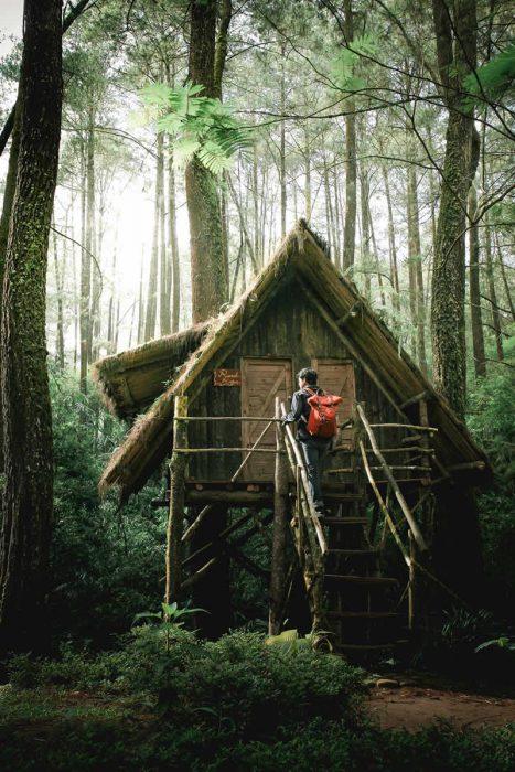 Eine kleine Holzhütte auf Stelzen mitten im tiefen Wald.