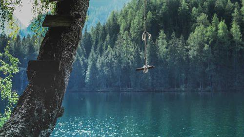 Eine Schaukel hängt an einem Baum vor dem Hintergrund eines idyllischen Sees.