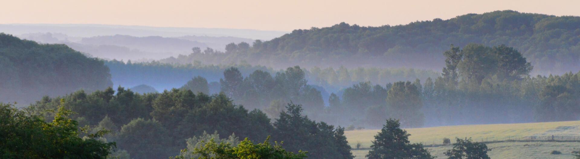 campagne brume Ardennes Thiérache