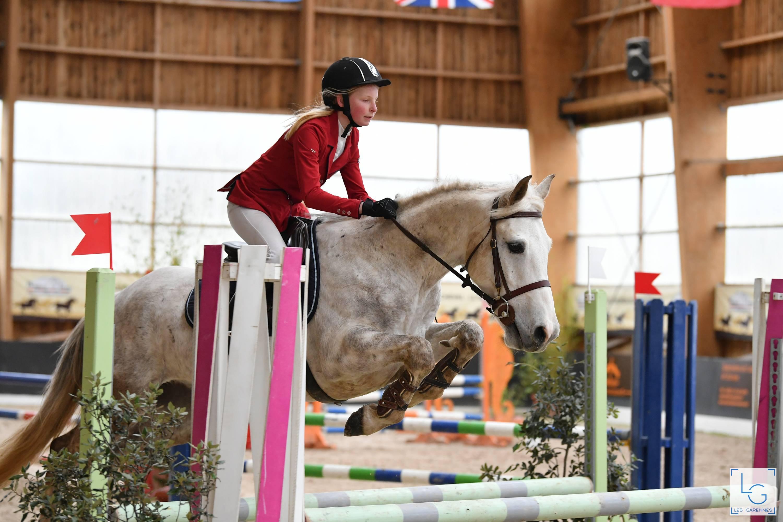 Vente Vente de poneys de sport chez MARIE-SAINT GERMAIN : 26 lots