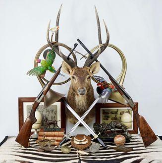 Vente Art de la Chasse & Histoire Naturelle chez Auctie's : 392 lots