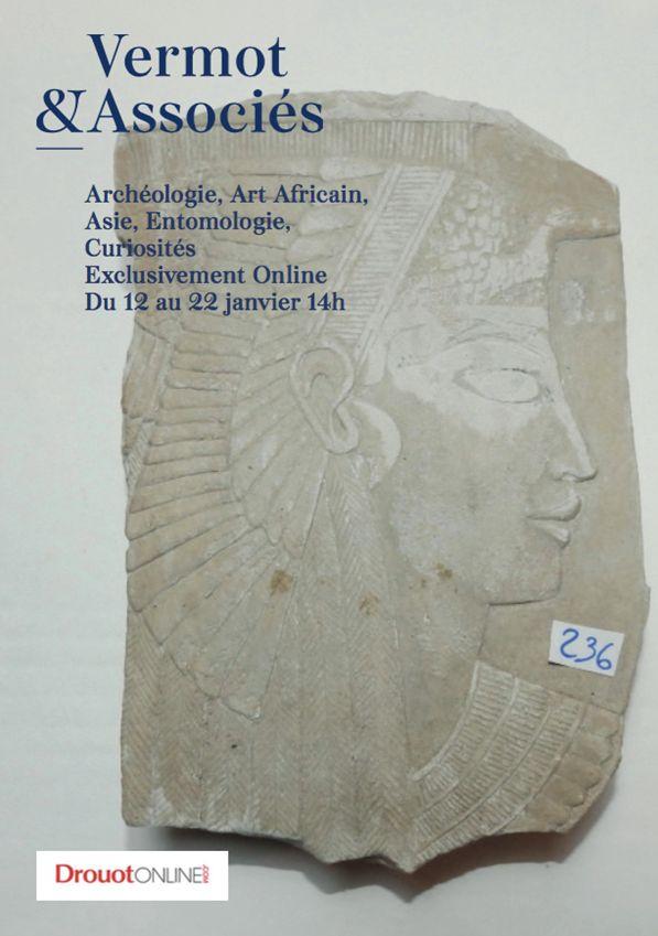 Auction Archéologie, Art Africain, Asie, Entomologie, Curiosités at Vermot et Associés : 622 lots