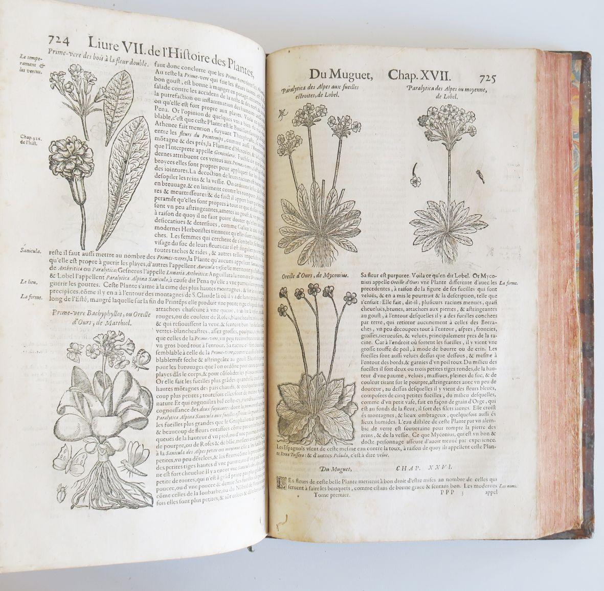 Vente Livres et Manuscrits chez Boisseau-Pomez : 655 lots