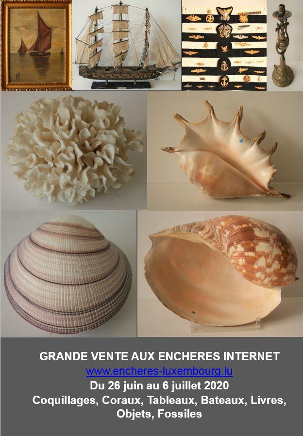 Vente Malacologia et objets liés à la mer (gouvernail, ancre, tableaux...) chez Kanerz Art : 361 lots