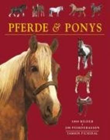 Pferde und Ponys. 200 Pferdedrassen