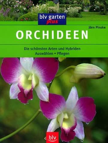 Orchideen (blv-garten plus)