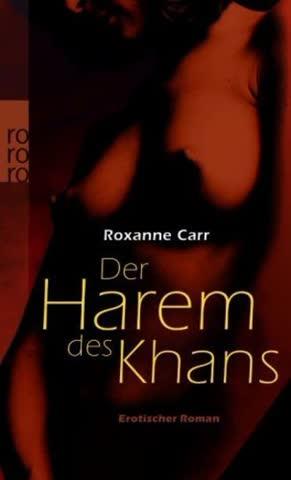 Der Harem des Khans: Erotischer Roman