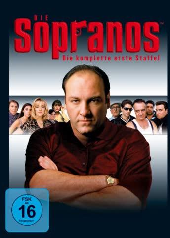 Sopranos, Die - Staffel 1