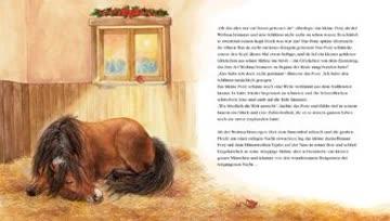 Das Weihnachtspony