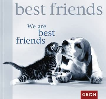 We are best friends (Happy Days)