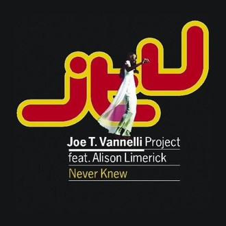 Joe T.Project Vannelli - Never Knew