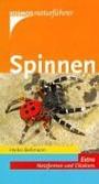 Spinnen, die wichtigsten heimischen Arten. Extra: Netzformen und Eikokons