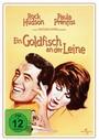 Ein Goldfisch an der Leine (Nostalgie-Edition)