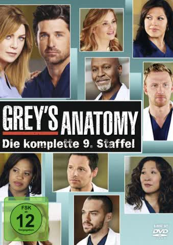 GREYS ANATOMY - S.9 - GREYS [DVD]