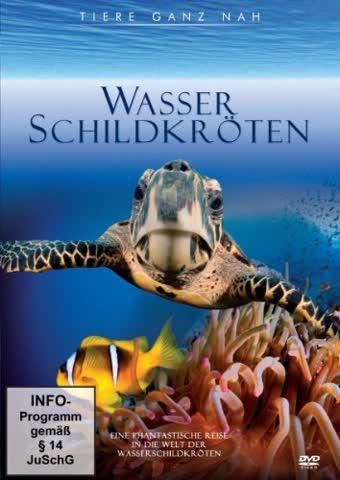 Tiere ganz nah - Wasserschildkröten