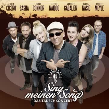 Various - Sing Meinen Song - das Tauschkonzert