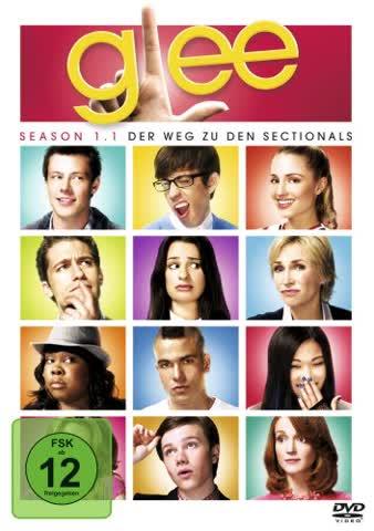 Glee - Season 1.1 [4 DVDs]
