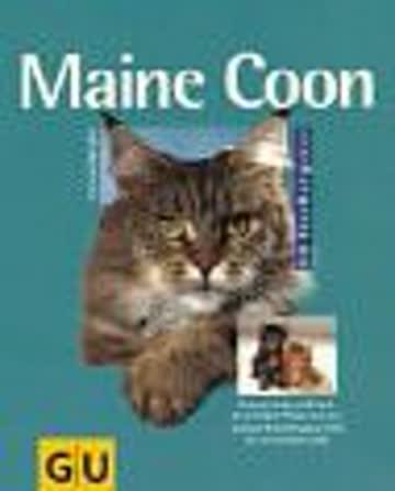 Maine Coon: Robuste Naturschönheit.