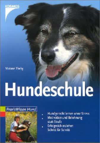 Hundeschule - Hundgerecht Lernen Ohne Stress. Motivation Und Belohnung Statt Strafe. Erfolgreich Erz
