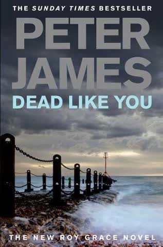 Dead Like You (Roy Grace series, Band 6)