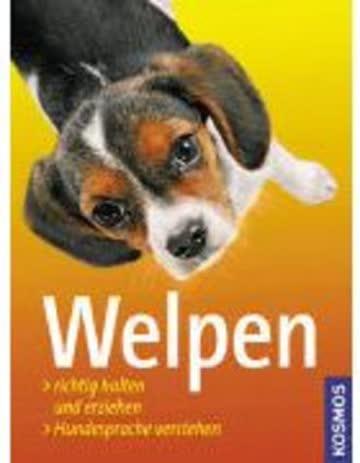 Welpen; Welpen Richtig Halten Und Erziehen / Hundesprache Verstehen