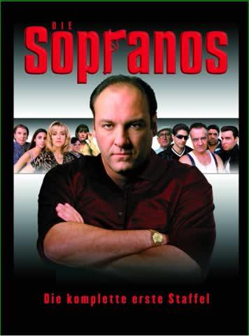 Die Sopranos - Die komplette erste Staffel [6 DVDs]