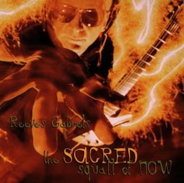 Reeves Gabrels - The Sacred Squall of Now