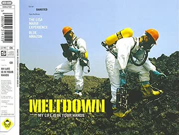 Meltdown - My Life in Your Hand