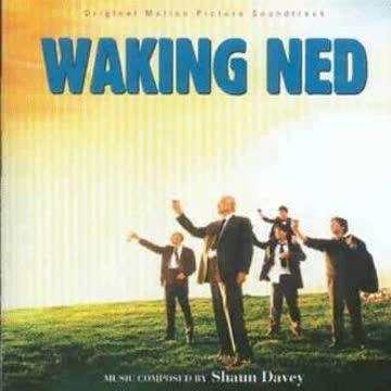 Various - Lang lebe Ned Divine (Waking Ned Devine)