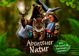 Abenteuer Natur - 119 - Siebenpunkt-Marienkäfer