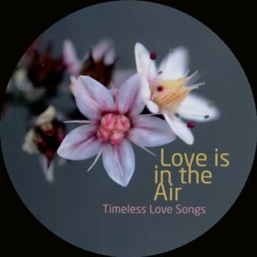 Compilation - Love Is In The Air
