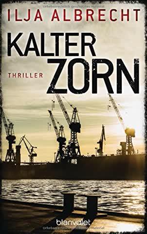 Kalter Zorn: Thriller