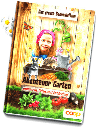 Abenteuer Garten - 011 - Kornblume