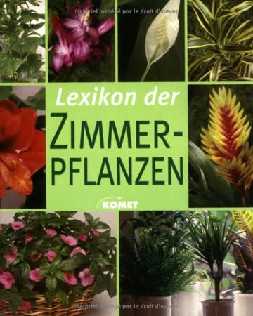 Lexikon der Zimmerpflanzen. Die schönsten Zimmerpflanzen von A bis Z und Wissenswertes zu Pflege und Standort.
